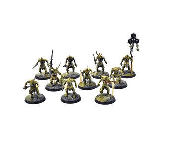 MAGGOTKIN OF NURGLE 10 Plaguebearers #1 PRO PAINTED Warhammer Sigmar