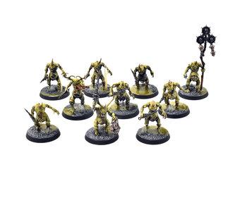 MAGGOTKIN OF NURGLE 10 Plaguebearers #3 PRO PAINTED Warhammer Sigmar