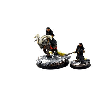MIDDLE-EARTH Thorin Foot & Mounted GOAT Converted #1 WELL PAINTED LOTR GW