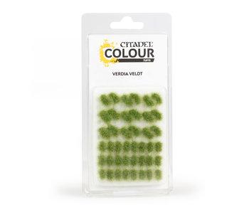 Citadel Colour Tufts - Verdia Veldt (PRÉ-COMMANDE)