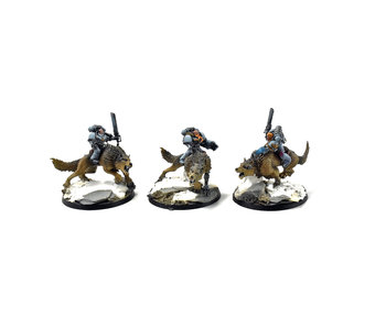 SPACE WOLVES Thunderwolf Cavalry #1 PRO PAINTED 40k