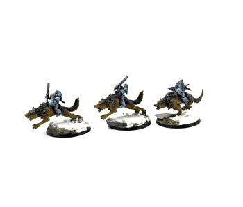 SPACE WOLVES Thunderwolf Cavalry #2 PRO PAINTED 40k