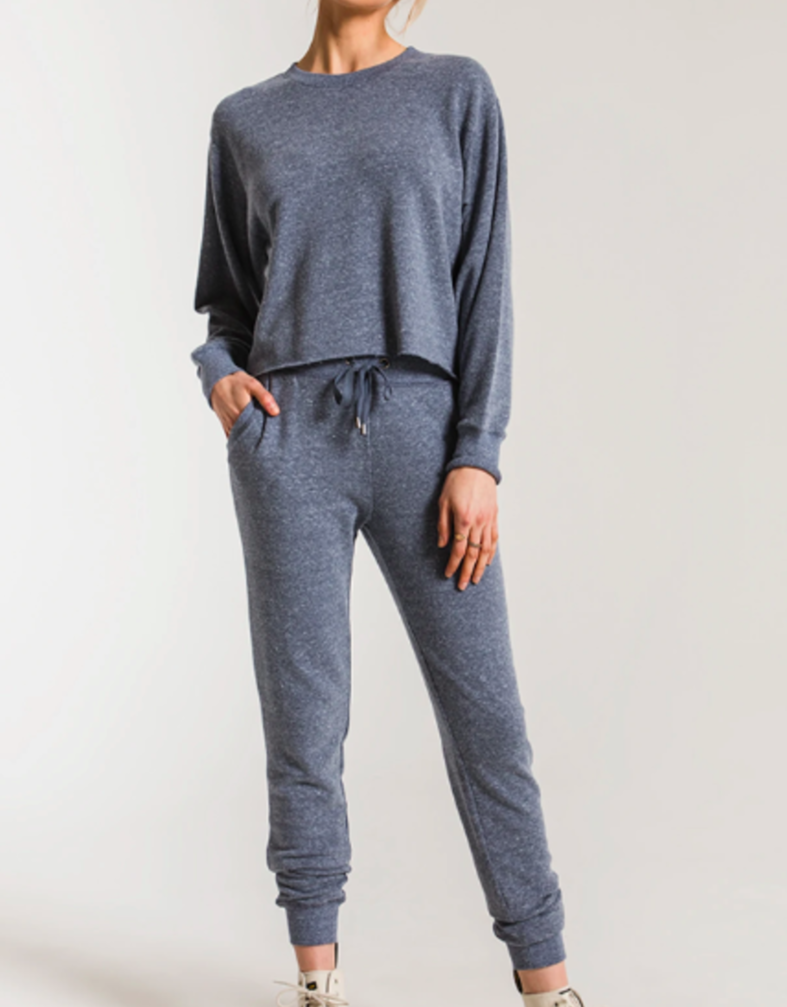 Z Supply The Triblend Courier Jogger