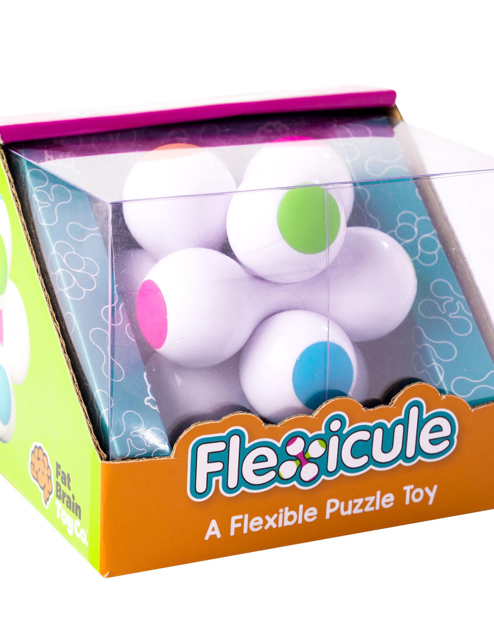 Fat Brain Toy Co. Flexicule