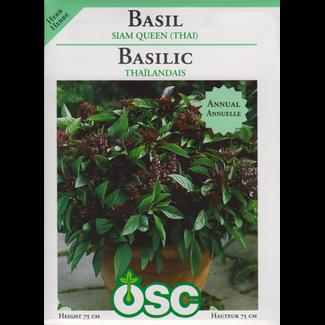 OSC Seeds Basil (Siam Queen (Thai)