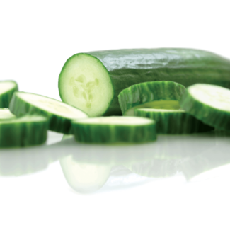 OSC Seeds Cucumber (Straight Eight)
