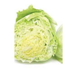 OSC Seeds Lettuce (Iceburg)