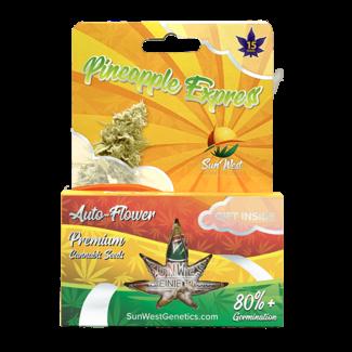 Sunwest Genetics Pineapple Express Autoflower (3 Pack)