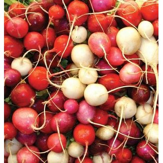West Coast Seeds Easter Egg II