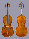 "ANGELI EURO 15 1/2"" Viola (old European wood)"