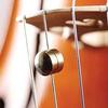 LUP-X LupX 8.5 gram brass Wolf Eliminator, cello