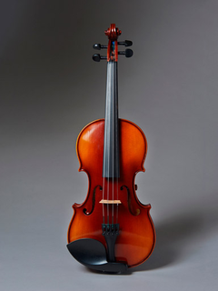 Realist REALIST electric 5-string Standard E-Series violin with case
