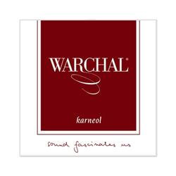 Warchal Warchal Karneol viola set