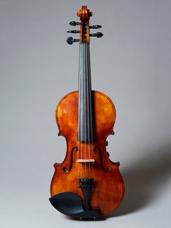 Realist REALIST electric 5-string Pro E-Series violin feat. Instant Active with Frantique finish, Wittner pegs & case