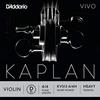 D'Addario D'Addario KAPLAN VIVO 4/4 violin D string, master