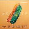 D'Addario D'Addario Ascente Viola D string, medium