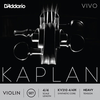 D'Addario D'Addario KAPLAN VIVO 4/4 violin string set, master