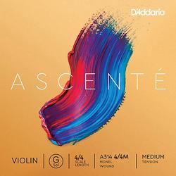 D'Addario D'Addario Ascente violin G string, master