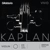D'Addario D'Addario KAPLAN VIVO 4/4 violin A string, master
