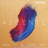D'Addario D'Addario Ascente violin string set, master