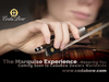CodaBow CodaBow MARQUISE GS violin bow, USA