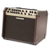 Fishman Fishman Loudbox ARTIST acoustic amp 120 watts 25.5 lbs