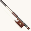 Arcus Arcus M5 round violin bow, silver-mounted