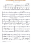 HAL LEONARD Pejtsik: Romantic Trio Music for Beginners (2 violins/cello or violin/viola/cello) score & parts, Edito Musica Budapest