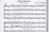 Heuer, R.& Joan Harrison: Easy Cellobrations for 4 Cellos