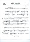 David E. Smith Heffler: America, the Beautiful (cello & piano)