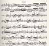 Edition Delrieu Beethoven, L.van: Variations on ''La ''Molinara'' (violin & piano)