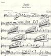 HAL LEONARD Hubay, Jeno: Zephir, Op.30#5 (violin & piano)