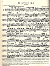 International Music Company Gavinies, Pierre: 24 Studies for Viola