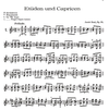 Alfred Music Dont, Jakob: Etudes & Caprices Op.35 (violin)