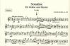 Dvorak, Antonin: Sonatina Op.100 (violin & piano)