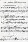 Alfred Music Applebaum, S.: Scales for Strings Bk.2 (violin)