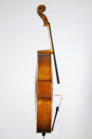 William Scott, cello, 2016, Minneapolis, USA