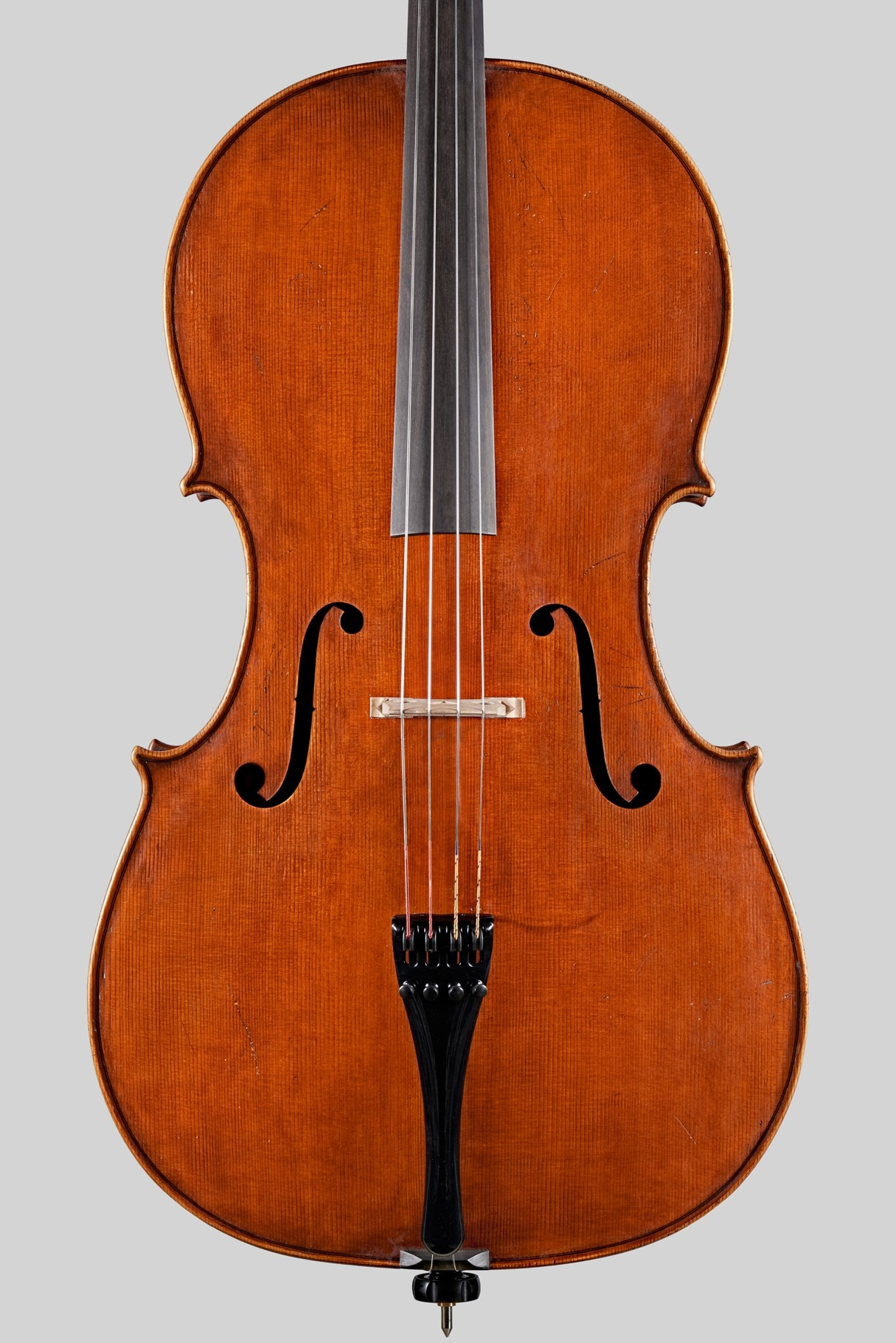 Italian Pasquale Sardone cello, Ruggeri model, 2017, Cremona, ITALY