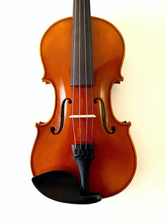 Serafina Serafina DX 4/4 violin with free case, bow, rosin & polish cloth