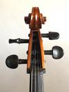 Mi & Vi Serafina DX 4/4 cello, fully carved, with high quality strings