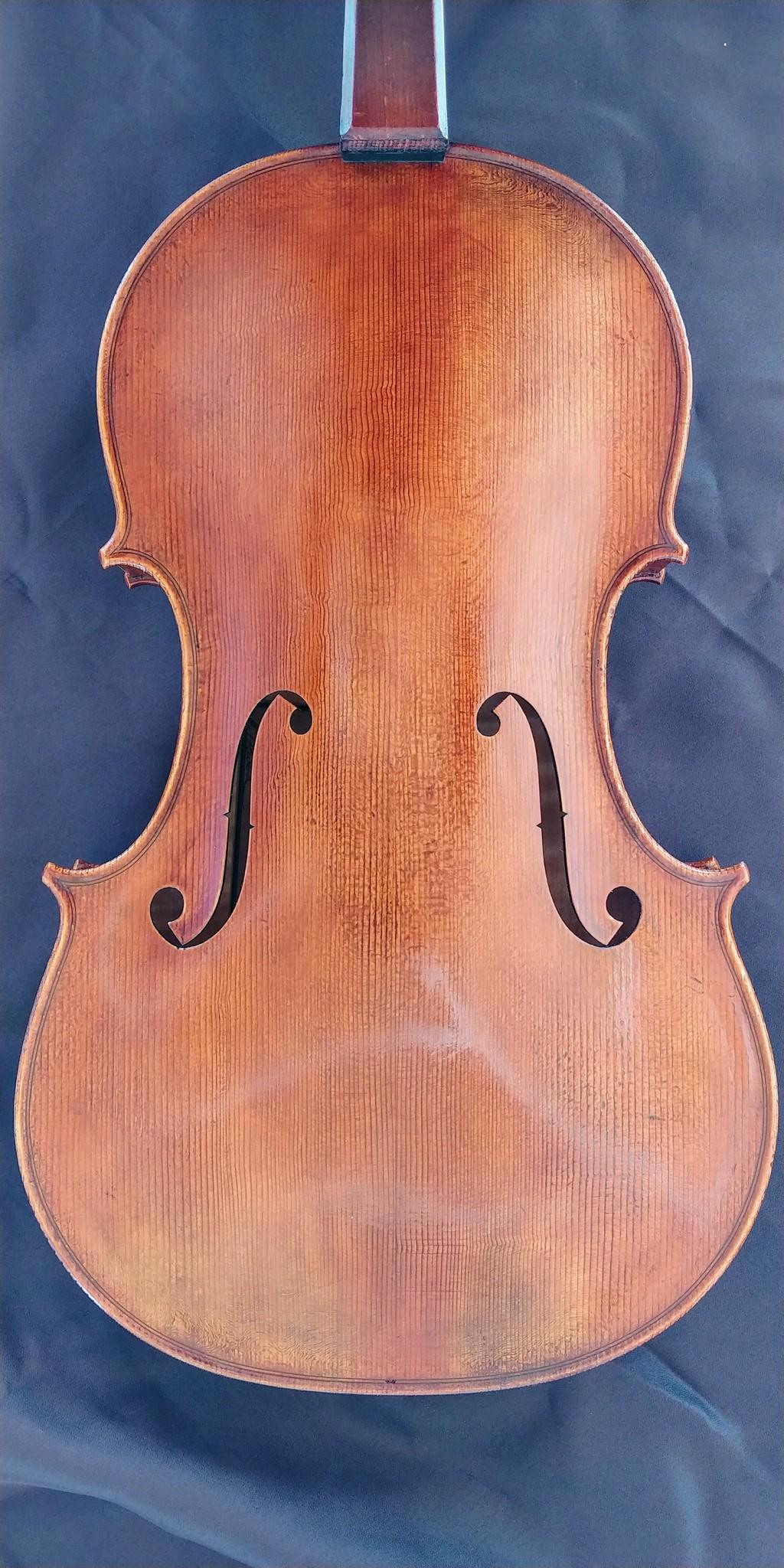 """Alexander Tzankow 16 1/4"""" viola, 2020, Lakewood, Colorado, USA"""