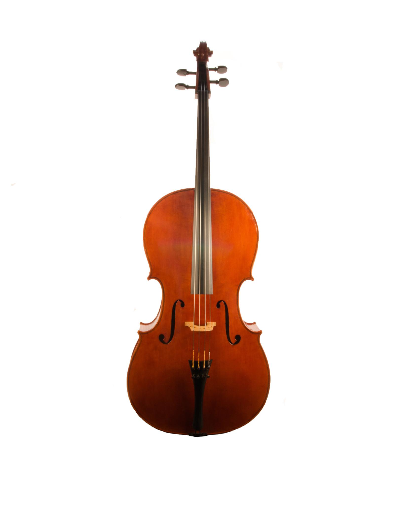 Carrie Scoggins cello, 2020, Salt Lake City, UT