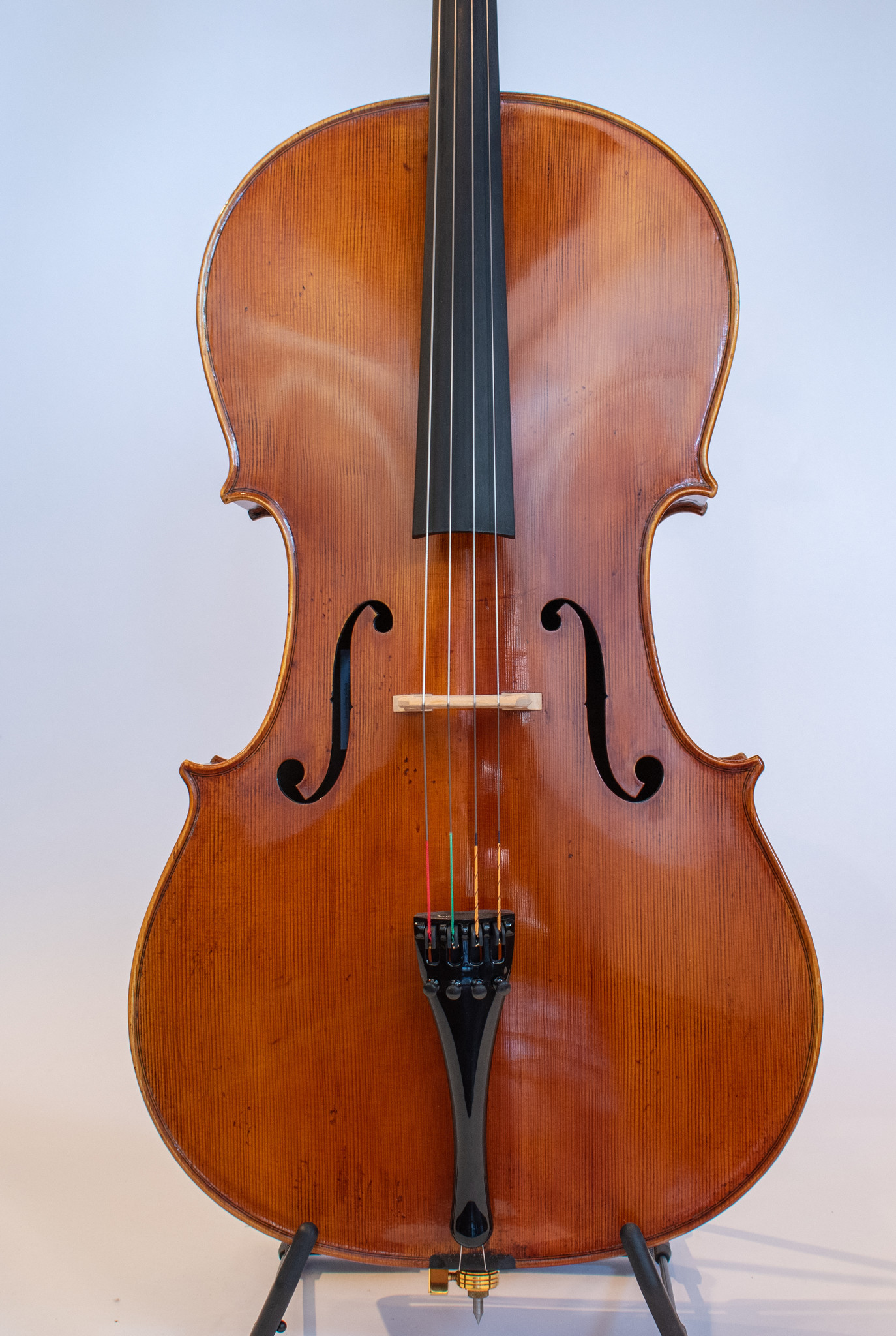 Akos Balazs Gold cello, 2019, Budapest, Hungary