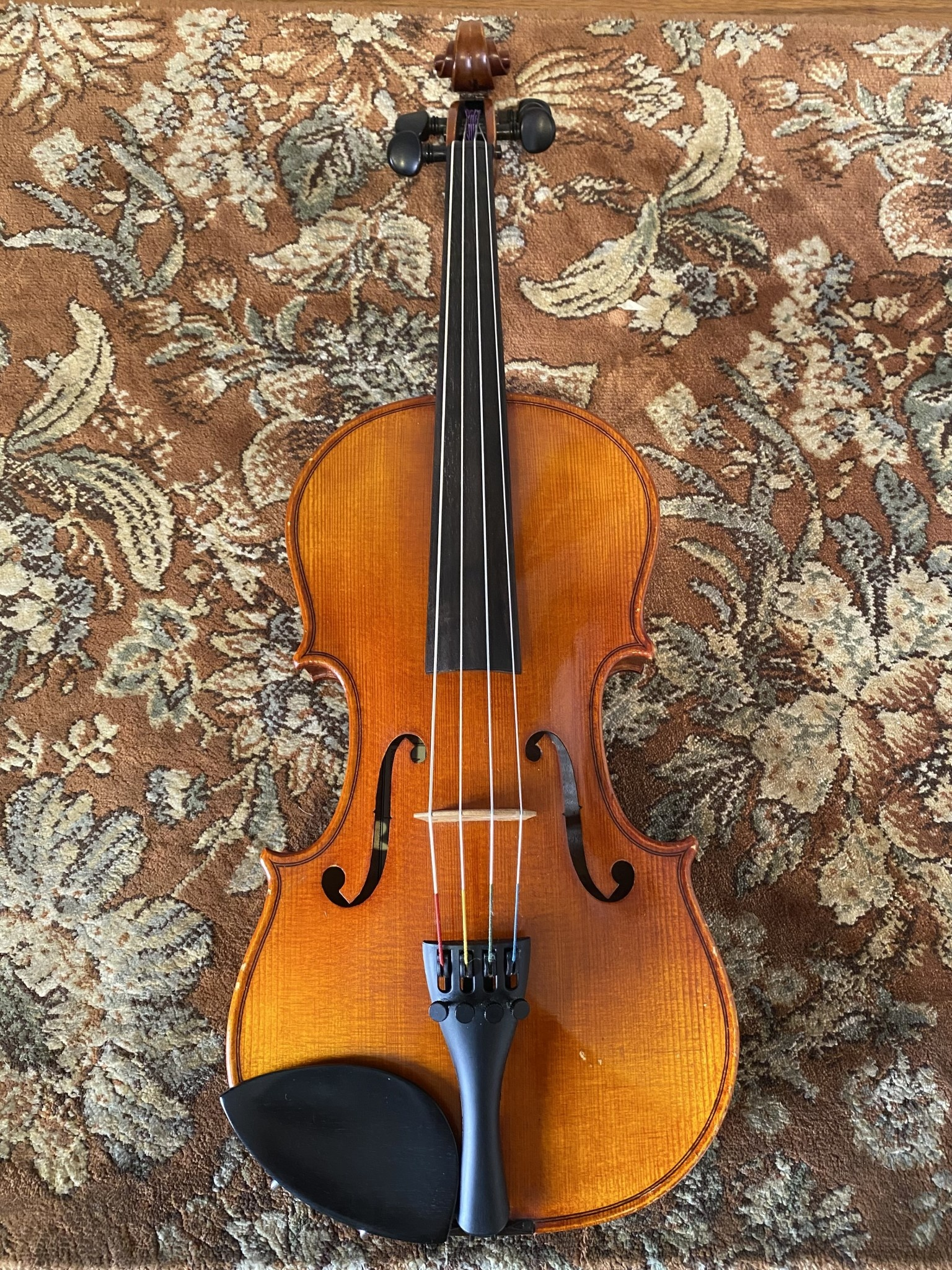 """Marco Polo Marco Polo 13"""" viola outfit, used"""