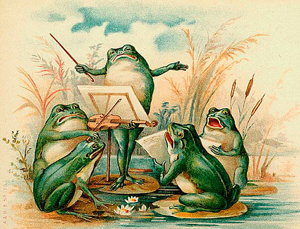 Madame Treacle Note Card with Frog Quartet