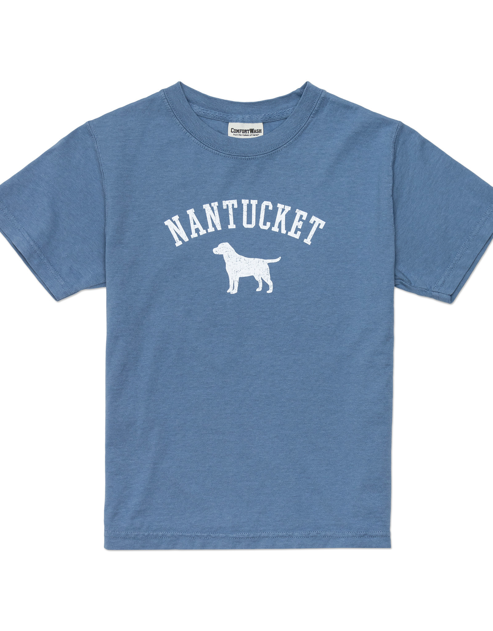 Comfort Wash Comfort Wash Youth Tee Lake Dog