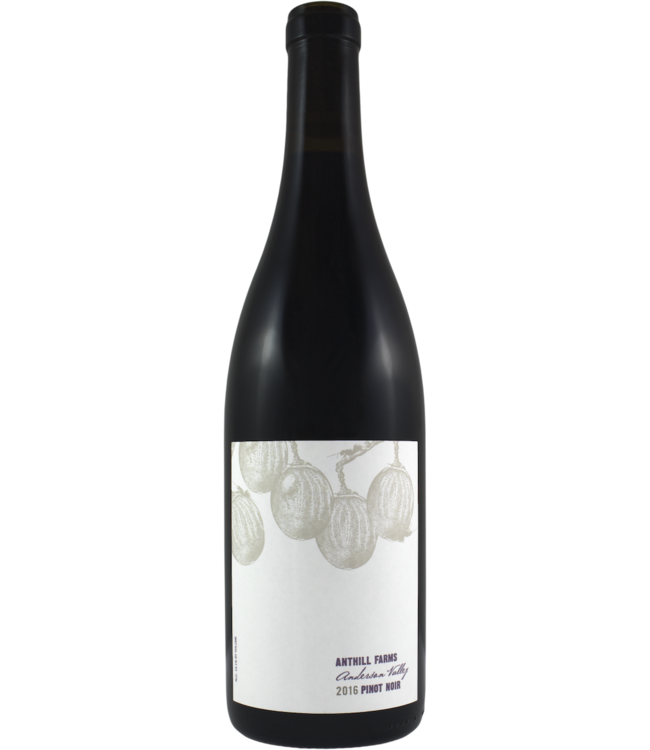 Anthill Farms Anderson Valley Pinot Noir 2016