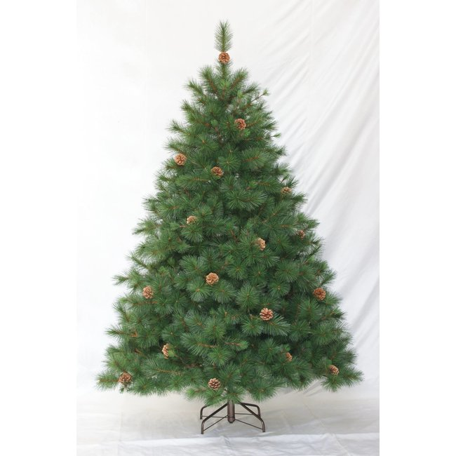 Christmas Tree (Forestal) 6.5 ft w/pine CC65417