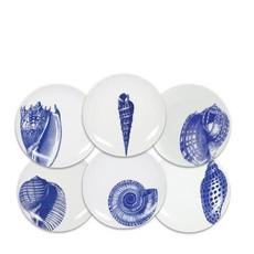 Caskata Caskata Shells Canapés Mixed Boxed Set/6