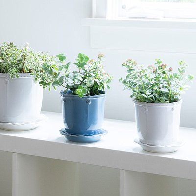 Juliska Juliska Berry & Thread Planter